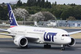 パンダさんが、成田国際空港で撮影したLOTポーランド航空 787-8 Dreamlinerの航空フォト(飛行機 写真・画像)