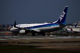 M.A.airphotoさんが、福岡空港で撮影した全日空 737-881の航空フォト(飛行機 写真・画像)