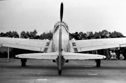 ハミングバードさんが、岐阜基地で撮影した日本陸軍 Ki-61 Hienの航空フォト(飛行機 写真・画像)