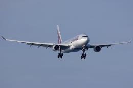 Hariboさんが、関西国際空港で撮影したカタール航空 A330-202の航空フォト(飛行機 写真・画像)