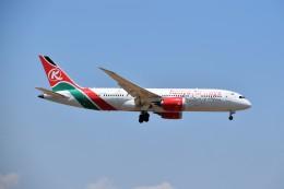ケニア航空 イメージ