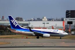 T.Sazenさんが、伊丹空港で撮影した全日空 737-781の航空フォト(飛行機 写真・画像)