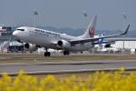 高松空港 - Takamatsu Airport [TAK/RJOT]で撮影された日本航空 - Japan Airlines [JL/JAL]の航空機写真