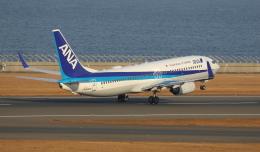 ☆ゆっきー☆さんが、中部国際空港で撮影した全日空 737-881の航空フォト(飛行機 写真・画像)