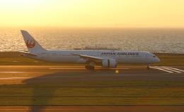☆ゆっきー☆さんが、中部国際空港で撮影した日本航空 787-9の航空フォト(飛行機 写真・画像)