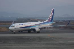 神宮寺ももさんが、徳島空港で撮影した全日空 737-881の航空フォト(飛行機 写真・画像)