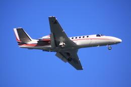 けいとパパさんが、羽田空港で撮影した読売新聞 560 Citation Encore+の航空フォト(飛行機 写真・画像)