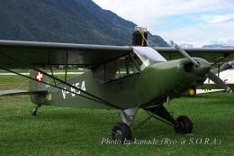 kanade/Ryo@S.O.R.A.さんが、シオン空港で撮影したPAV-Flyers PA-18-150 Super Cubの航空フォト(飛行機 写真・画像)