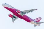 RUNWAY23.TADAさんが、関西国際空港で撮影したピーチ A320-214の航空フォト(飛行機 写真・画像)