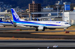 かめ/JA816Aさんが、伊丹空港で撮影した全日空 737-881の航空フォト(飛行機 写真・画像)