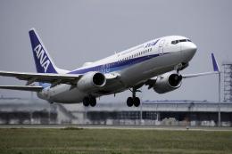 planetさんが、中部国際空港で撮影した全日空 737-881の航空フォト(飛行機 写真・画像)