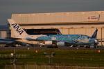 LEGACY-747さんが、成田国際空港で撮影した全日空 A380-841の航空フォト(飛行機 写真・画像)