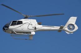 IL-18さんが、東京ヘリポートで撮影したオートパンサー EC130B4の航空フォト(飛行機 写真・画像)