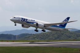 Kaaazさんが、岡山空港で撮影した全日空 787-8 Dreamlinerの航空フォト(飛行機 写真・画像)