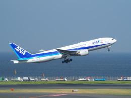 鷹71さんが、羽田空港で撮影した全日空 777-281の航空フォト(飛行機 写真・画像)