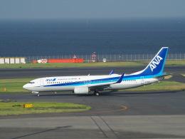 鷹71さんが、羽田空港で撮影した全日空 737-881の航空フォト(飛行機 写真・画像)