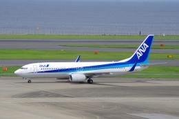 tasho0525さんが、羽田空港で撮影した全日空 737-881の航空フォト(飛行機 写真・画像)