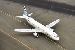リョウさんが、新千歳空港で撮影したエアプサン A321-231の航空フォト(飛行機 写真・画像)