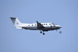 kumagorouさんが、仙台空港で撮影した陸上自衛隊 LR-2の航空フォト(飛行機 写真・画像)