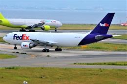 amagoさんが、関西国際空港で撮影したフェデックス・エクスプレス A300F4-605Rの航空フォト(飛行機 写真・画像)