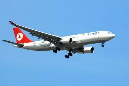 まいけるさんが、スワンナプーム国際空港で撮影したターキッシュ・エアラインズ A330-203の航空フォト(飛行機 写真・画像)