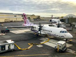 ぐっちーさんが、ダニエル・K・イノウエ国際空港で撮影したオハナ・バイ・ハワイアン ATR-42-500の航空フォト(飛行機 写真・画像)