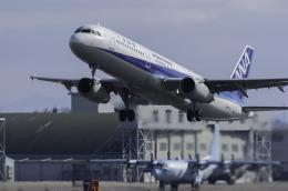 planetさんが、名古屋飛行場で撮影した全日空 A321-131の航空フォト(飛行機 写真・画像)