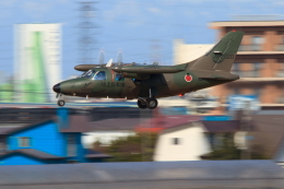 noriphotoさんが、札幌飛行場で撮影した陸上自衛隊 LR-1の航空フォト(飛行機 写真・画像)