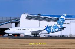 キットカットさんが、成田国際空港で撮影したBBJ One 737-7CJ BBJの航空フォト(飛行機 写真・画像)