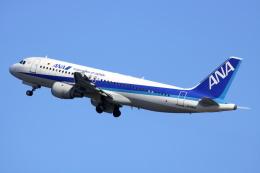 NANASE UNITED®さんが、羽田空港で撮影した全日空 A320-211の航空フォト(飛行機 写真・画像)
