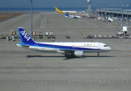 ☆NSさんが、中部国際空港で撮影した全日空 A320-211の航空フォト(飛行機 写真・画像)