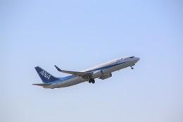 shimayanJPさんが、成田国際空港で撮影した全日空 737-881の航空フォト(飛行機 写真・画像)