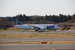 shimayanJPさんが、成田国際空港で撮影したLOTポーランド航空 787-8 Dreamlinerの航空フォト(飛行機 写真・画像)