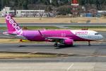 Cozy Gotoさんが、成田国際空港で撮影したピーチ A320-214の航空フォト(飛行機 写真・画像)