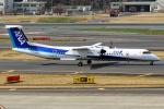 Cozy Gotoさんが、成田国際空港で撮影したANAウイングス DHC-8-402Q Dash 8の航空フォト(飛行機 写真・画像)