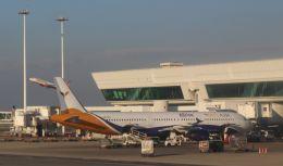 Rsaさんが、レオナルド・ダ・ヴィンチ国際空港で撮影したヤンエアー A321-112の航空フォト(飛行機 写真・画像)