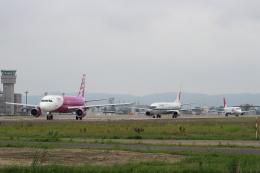 kunimi5007さんが、仙台空港で撮影したピーチ A320-214の航空フォト(飛行機 写真・画像)