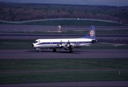 parurunさんが、新千歳空港で撮影したエア・スプレイ L-188C Electraの航空フォト(飛行機 写真・画像)