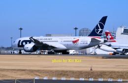 キットカットさんが、成田国際空港で撮影したLOTポーランド航空 787-8 Dreamlinerの航空フォト(飛行機 写真・画像)