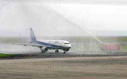 asuto_fさんが、大分空港で撮影した全日空 A320-211の航空フォト(飛行機 写真・画像)