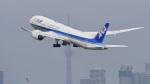 パンダさんが、羽田空港で撮影した全日空 787-9の航空フォト(飛行機 写真・画像)