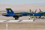 Flankerさんが、エルセントロ海軍航空基地で撮影したアメリカ海軍 F/A-18C Hornetの航空フォト(飛行機 写真・画像)