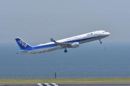 ポン太さんが、羽田空港で撮影した全日空 A321-211の航空フォト(飛行機 写真・画像)