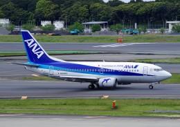 050813さんが、成田国際空港で撮影したANAウイングス 737-54Kの航空フォト(飛行機 写真・画像)