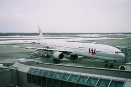kinsanさんが、新千歳空港で撮影した日本航空 777-346の航空フォト(飛行機 写真・画像)
