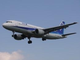chappyさんが、伊丹空港で撮影した全日空 A320-211の航空フォト(飛行機 写真・画像)