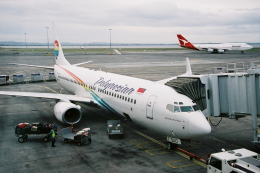 kinsanさんが、オークランド空港で撮影したポリネシアン航空 737-8Q8の航空フォト(飛行機 写真・画像)