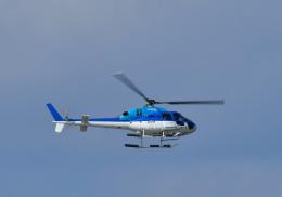 くーぺいさんが、那覇空港で撮影したエクセル航空 AS355N Ecureuil 2の航空フォト(飛行機 写真・画像)