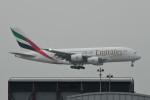 kuro2059さんが、香港国際空港で撮影したエミレーツ航空 A380-842の航空フォト(飛行機 写真・画像)