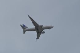 JE6SDWさんが、福岡空港で撮影したユナイテッド航空 737-724の航空フォト(飛行機 写真・画像)